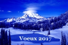 Voeux-2017-2